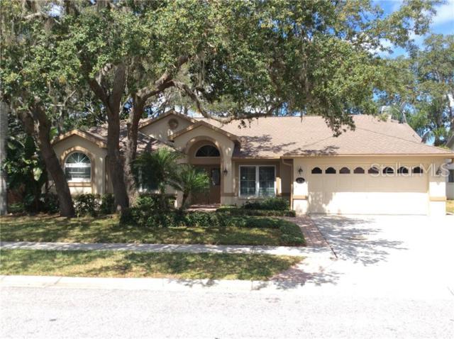 5333 Wellfield Road, New Port Richey, FL 34655 (MLS #W7813167) :: Premium Properties Real Estate Services