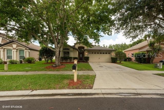 19653 Ellendale Drive, Land O Lakes, FL 34638 (MLS #W7813266) :: Godwin Realty Group