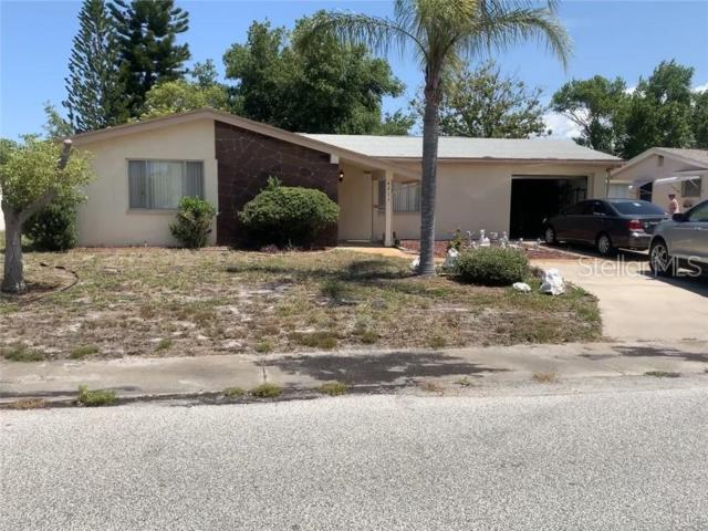4211 Woodsville Drive, New Port Richey, FL 34652 (MLS #W7813274) :: The Duncan Duo Team