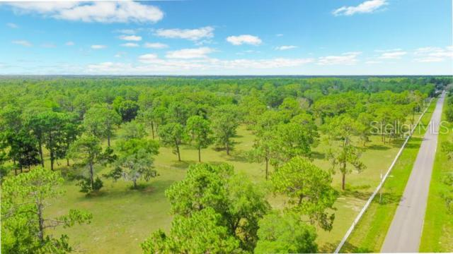 Address Not Published, Spring Hill, FL 34604 (MLS #W7813342) :: The Duncan Duo Team