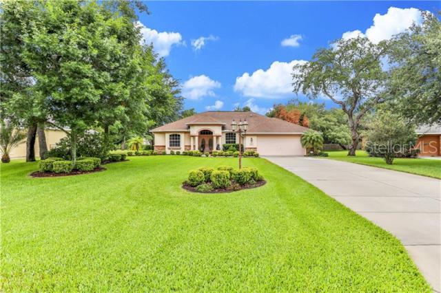4395 Rachel Boulevard, Spring Hill, FL 34607 (MLS #W7813350) :: CENTURY 21 OneBlue