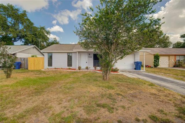 7503 Mitchell Ranch Road, New Port Richey, FL 34655 (MLS #W7813382) :: The Duncan Duo Team