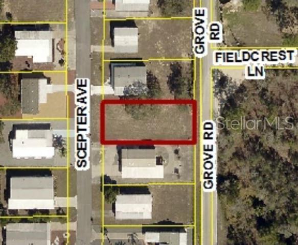 9925 Scepter Avenue, Brooksville, FL 34613 (MLS #W7813385) :: The Duncan Duo Team