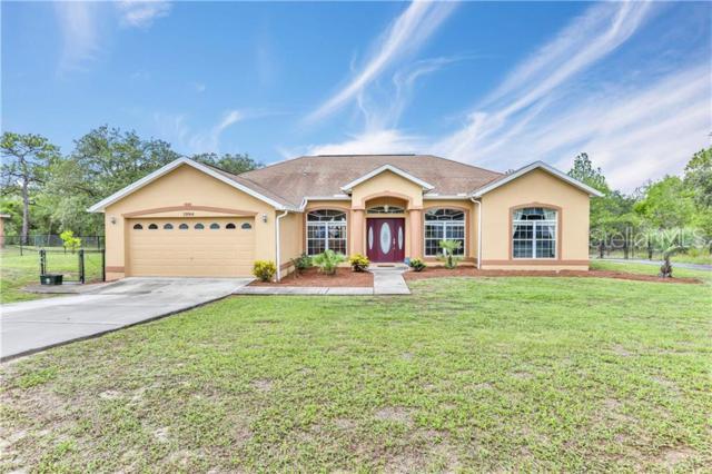 13064 Meinert Avenue, Brooksville, FL 34613 (MLS #W7813396) :: Premium Properties Real Estate Services