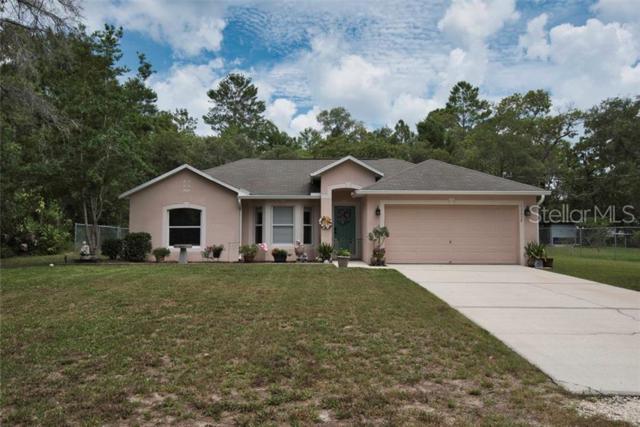 12055 Osprey Avenue, Weeki Wachee, FL 34614 (MLS #W7813424) :: Cartwright Realty