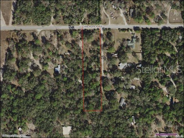 15606 Little Ranch Road, Spring Hill, FL 34610 (MLS #W7813438) :: The Duncan Duo Team