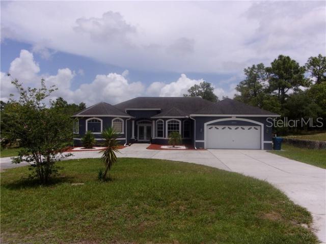 10275 Egret Avenue, Weeki Wachee, FL 34613 (MLS #W7813452) :: Cartwright Realty