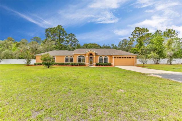 13346 Star Road, Brooksville, FL 34613 (MLS #W7813495) :: Cartwright Realty
