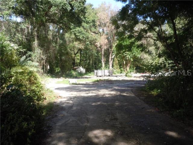 25138 Rattler Lane, Brooksville, FL 34601 (MLS #W7813503) :: The Duncan Duo Team