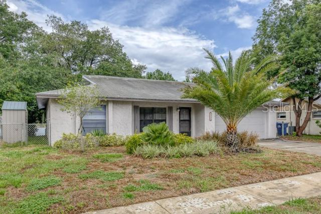4155 Cotton Tail Drive, New Port Richey, FL 34653 (MLS #W7813525) :: The Duncan Duo Team