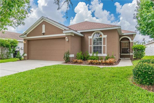 9441 Beaufort Court, New Port Richey, FL 34654 (MLS #W7813543) :: The Duncan Duo Team