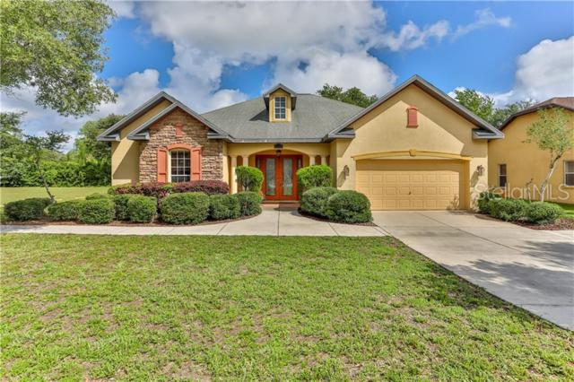 14203 Spring Hill Drive, Spring Hill, FL 34609 (MLS #W7813546) :: The Duncan Duo Team