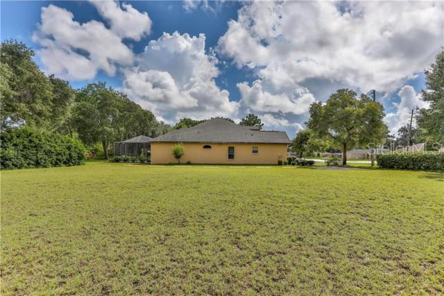 Spring Hill Drive, Spring Hill, FL 34609 (MLS #W7813550) :: The Duncan Duo Team