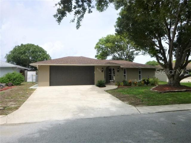 9125 Panda Lane, Port Richey, FL 34668 (MLS #W7813567) :: Paolini Properties Group