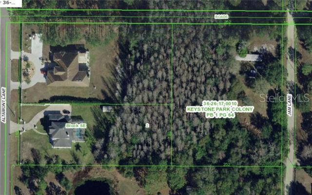 1501 Jam Lane, Odessa, FL 33556 (MLS #W7813569) :: Team Bohannon Keller Williams, Tampa Properties