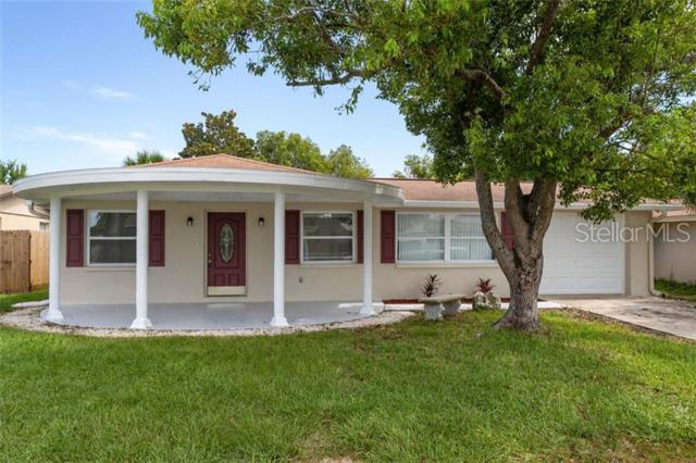 3437 Jackson Drive, Holiday, FL 34691 (MLS #W7813571) :: The Duncan Duo Team