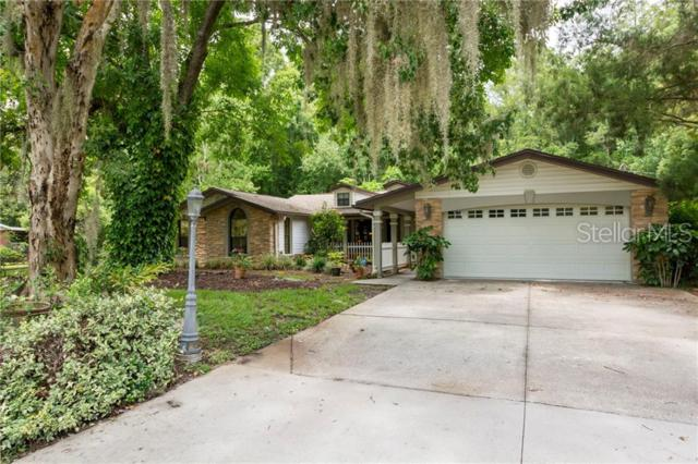 9831 Delray Drive, New Port Richey, FL 34654 (MLS #W7813579) :: Paolini Properties Group