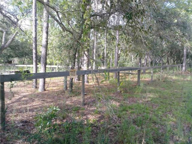 14327 Hurricane Drive #1, Weeki Wachee, FL 34614 (MLS #W7813616) :: NewHomePrograms.com LLC