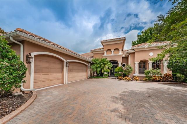 1068 Skye Lane, Palm Harbor, FL 34683 (MLS #W7813619) :: RE/MAX CHAMPIONS