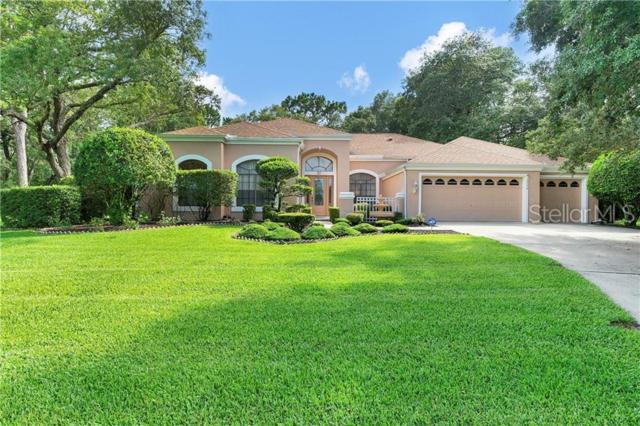 13748 Powder Keg Court, Hudson, FL 34667 (MLS #W7813644) :: Cartwright Realty