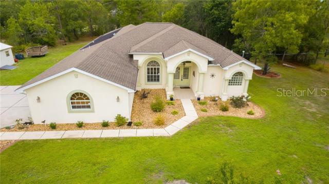 8365 Mazette Road, Weeki Wachee, FL 34613 (MLS #W7813689) :: Premium Properties Real Estate Services
