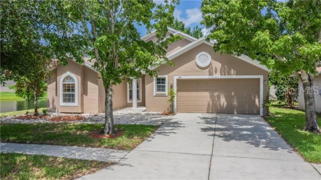 7831 Stoneleigh Drive, Land O Lakes, FL 34637 (MLS #W7813712) :: Griffin Group