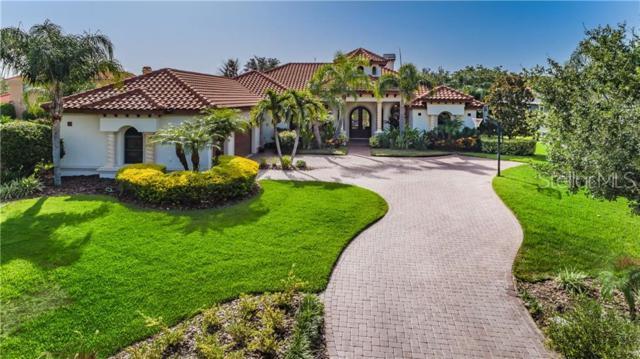 1211 Almeria Drive, Trinity, FL 34655 (MLS #W7813761) :: Charles Rutenberg Realty