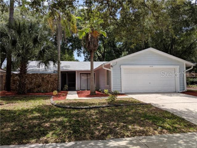 18428 Swan Lake Drive, Lutz, FL 33549 (MLS #W7813824) :: The Duncan Duo Team