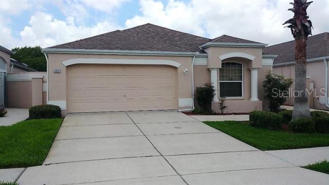 365 Royal Palm Way, Spring Hill, FL 34608 (MLS #W7813839) :: NewHomePrograms.com LLC