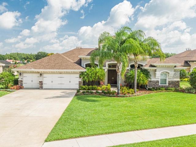 3175 Foxwood Lane, Tarpon Springs, FL 34688 (MLS #W7813840) :: Team 54