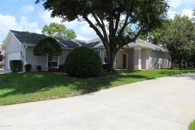86 W Byrsonima Loop, Homosassa, FL 34446 (MLS #W7813841) :: Griffin Group