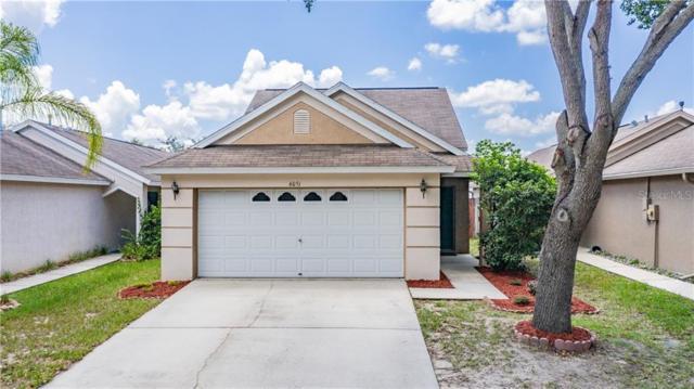 6051 White Sails Drive, Wesley Chapel, FL 33545 (MLS #W7813930) :: Premier Home Experts