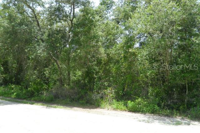0 Field Street, New Port Richey, FL 34654 (MLS #W7813934) :: Team Bohannon Keller Williams, Tampa Properties