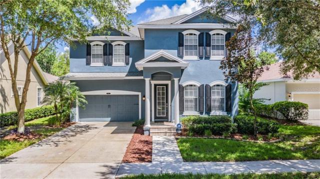 8337 Lagerfeld Drive, Land O Lakes, FL 34637 (MLS #W7813946) :: Premier Home Experts