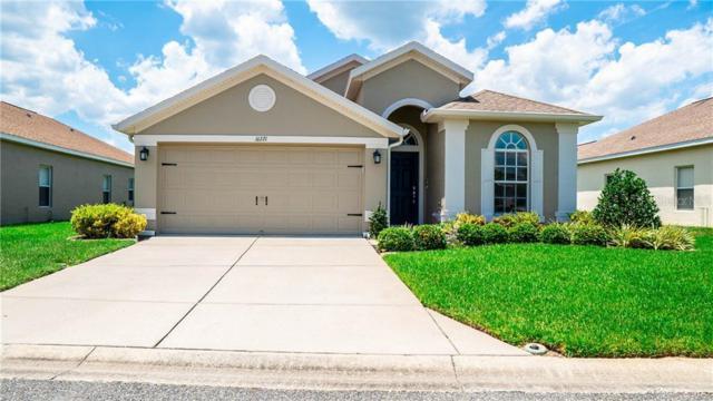 16721 Caracara Court, Spring Hill, FL 34610 (MLS #W7814008) :: Jeff Borham & Associates at Keller Williams Realty