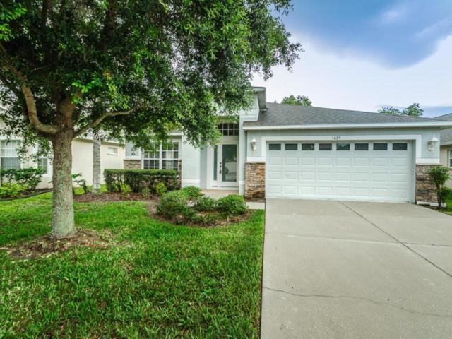 3029 Trinity Cottage Drive, Land O Lakes, FL 34638 (MLS #W7814072) :: Team 54