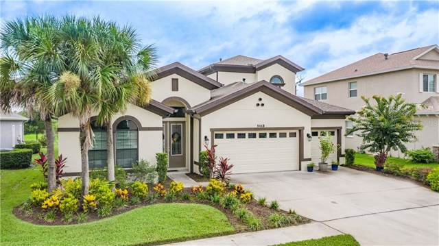8443 Eagle Brook Drive, Land O Lakes, FL 34638 (MLS #W7814097) :: Mark and Joni Coulter | Better Homes and Gardens