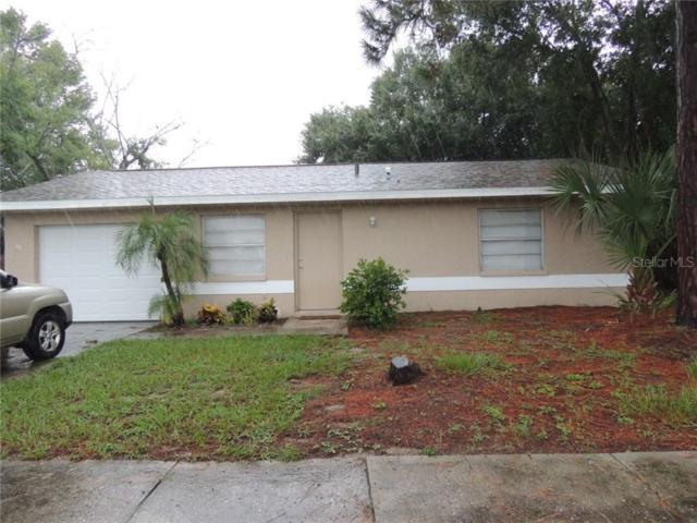 10321 Basket Oak Drive, Port Richey, FL 34668 (MLS #W7814239) :: Jeff Borham & Associates at Keller Williams Realty