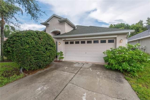 2740 Big Pine Drive, Holiday, FL 34691 (MLS #W7814255) :: Jeff Borham & Associates at Keller Williams Realty