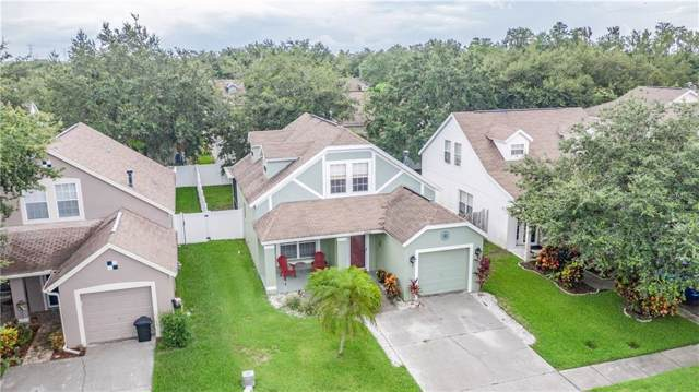 8426 Hawbuck Street, Trinity, FL 34655 (MLS #W7814278) :: Delgado Home Team at Keller Williams