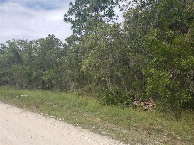 9155 Bunting Road, Weeki Wachee, FL 34613 (MLS #W7814337) :: Team 54