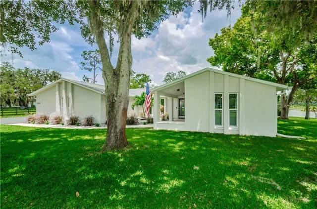 11514 Pine Forest Drive, New Port Richey, FL 34654 (MLS #W7814355) :: Team Bohannon Keller Williams, Tampa Properties