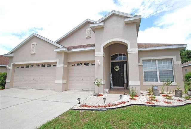 9234 Edistro Place, New Port Richey, FL 34654 (MLS #W7814368) :: The Duncan Duo Team