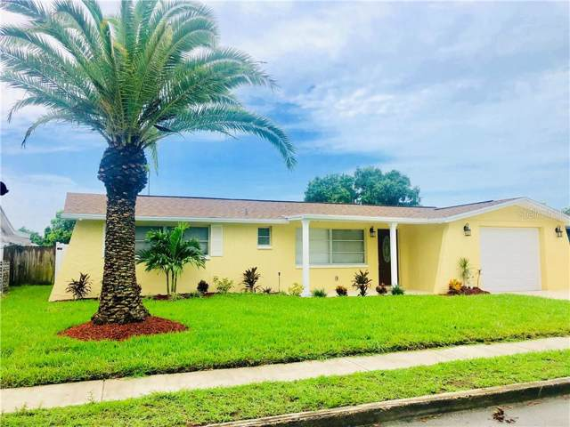 5610 Elkhorn Boulevard, Holiday, FL 34690 (MLS #W7814372) :: Jeff Borham & Associates at Keller Williams Realty