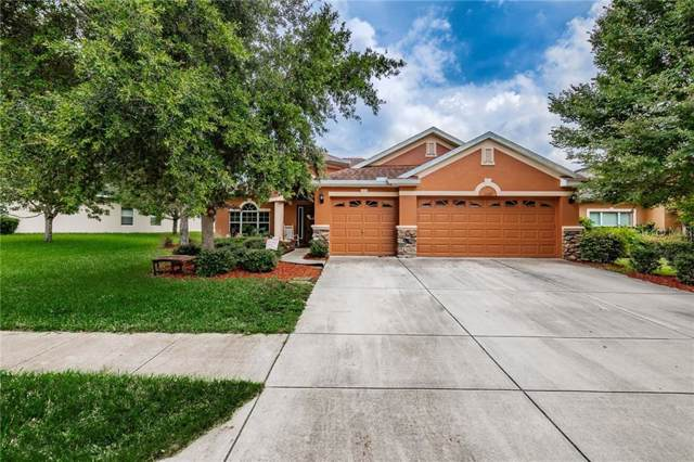 11549 Biddeford Place, New Port Richey, FL 34654 (MLS #W7814376) :: Team Bohannon Keller Williams, Tampa Properties