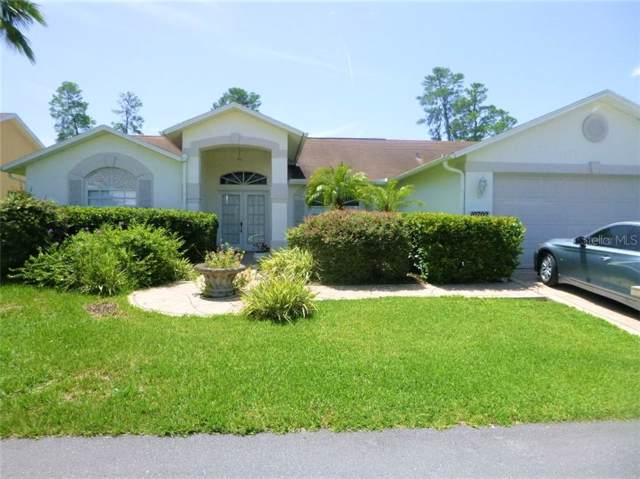 10702 Magrath Lane, New Port Richey, FL 34654 (MLS #W7814387) :: Team Bohannon Keller Williams, Tampa Properties