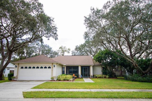 10134 Bozeman Drive, New Port Richey, FL 34655 (MLS #W7814388) :: Griffin Group