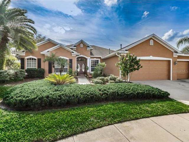 10724 Gooseberry Court, Trinity, FL 34655 (MLS #W7814408) :: Delgado Home Team at Keller Williams