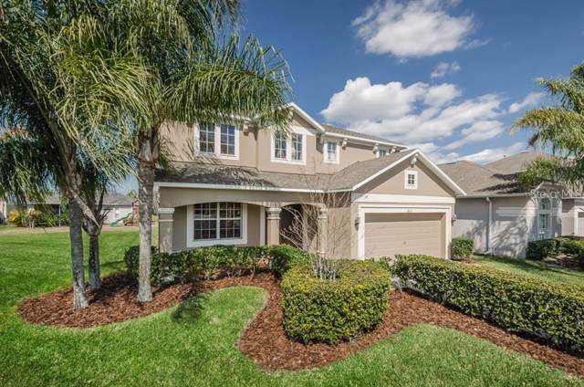 8115 Lucidul Court, Trinity, FL 34655 (MLS #W7814433) :: Griffin Group