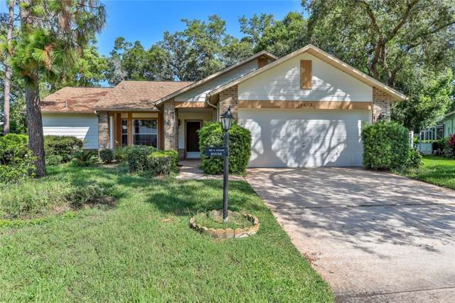 3015 Saw Mill Lane, Spring Hill, FL 34606 (MLS #W7814459) :: Premier Home Experts